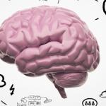 """Proyecto """"NEE y NEAE desde una perspectiva neurocognitiva"""""""